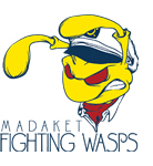 grid_wasps